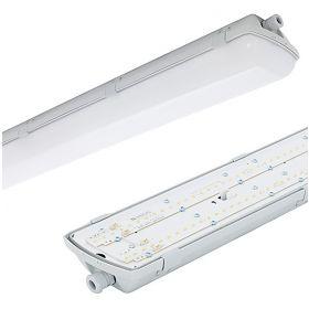BRINA LED